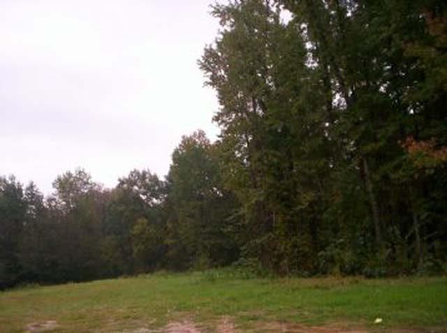 .19 Ac Arkansas Lot in Diamond City Grt Access Views