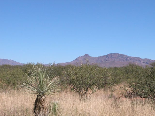 4.6 Acres of Southern Arizona Land near Douglas