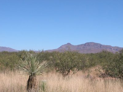 .24 Ac Southern Arizona Parcel near Douglas Tombstone