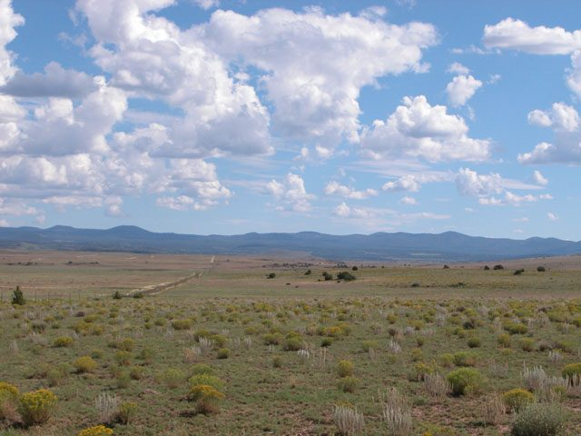 1.17 Acre Parcel in the White Mountains of Arizona