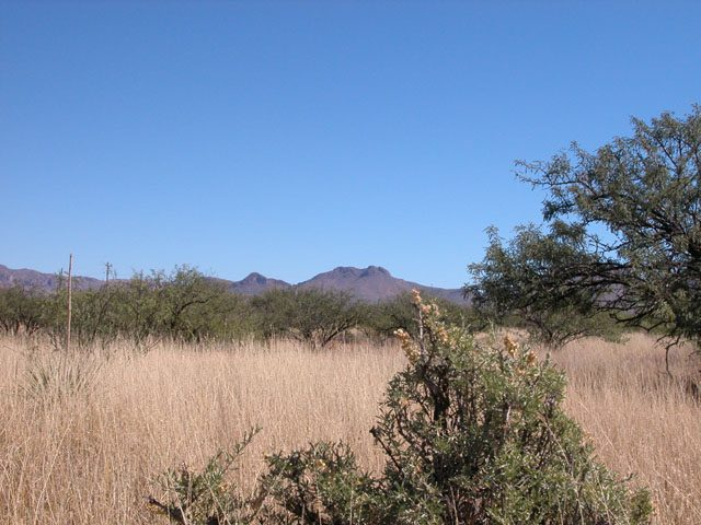 .15 Acre Arizona Parcel near Douglas Golf Club