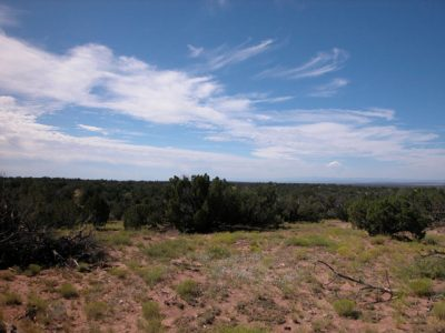 5 Acres of Arizona Land on the Colorado Plateau