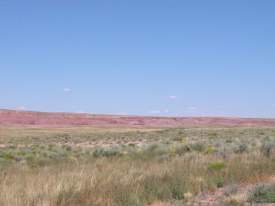 .37 Northern Arizona Lot just outside Concho Valley