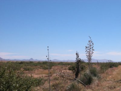 .5 Acre Arizona Parcel near Shadow Mt. County Club