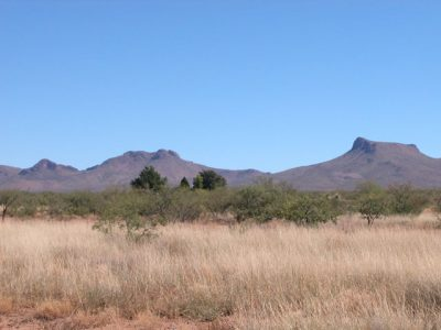 4.95 Acre Arizona Parcel 15 miles from Douglas