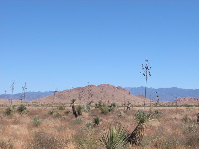 5 Acs of Arizona Investment Land near Arizona Sunsite