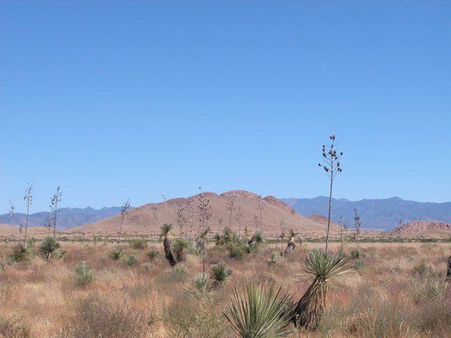 .14 Ac Southern Arizona Lot near National Forest Lake