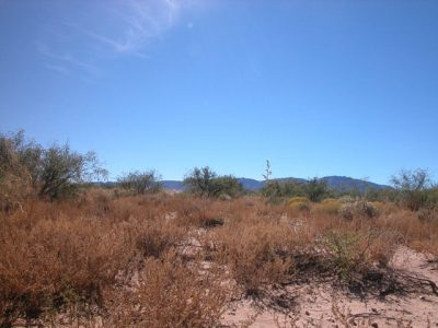 $129 DOWN/$129 MONTH 6.10 Acre parcel in Southern AZ!