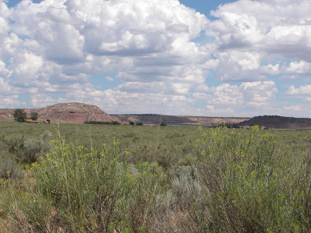 1.03 Acre Arizona Parcel on the Colorado Plateau