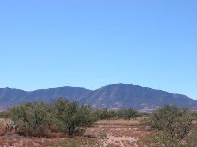 .45 Ac Southern Arizona Parcel near Douglas Tombstone