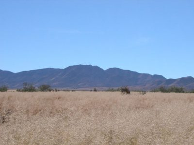 4.5 Acre Ranchette near Historic Bisbee Arizona
