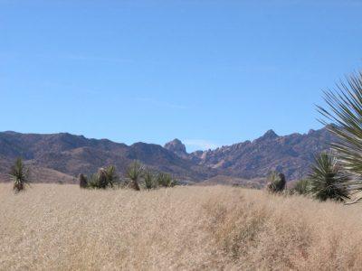 .3 Ac Southern Arizona Parcel near Douglas Tombstone