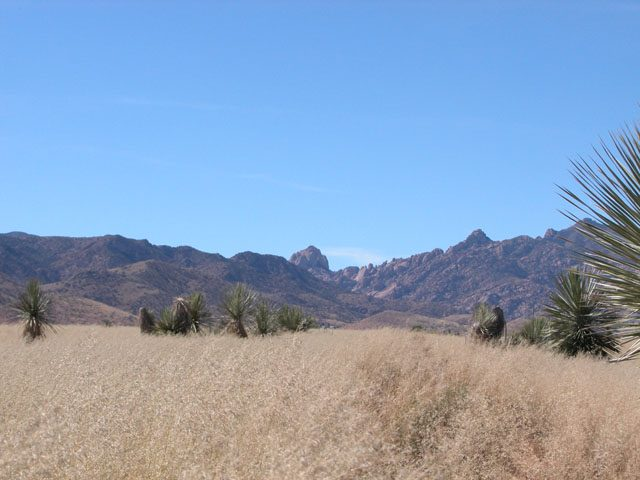 .4 Ac Parcel in Cochise Arizona Short Drive to Tucson