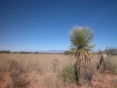 .25 Acrs of Southern Arizona Land with Incredibile View