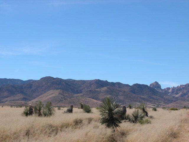 .4 Acre Arizona Parcel near the Coronado Nat. Forest