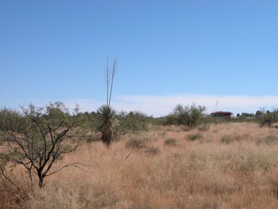 .85 Acres of Arizona Land near Willcox Interstate 10