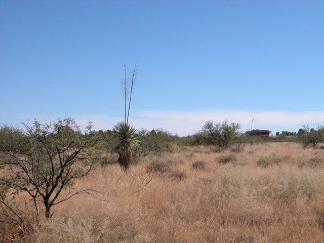 .85 Acres of Arizona Land near Willcox Interstate 10
