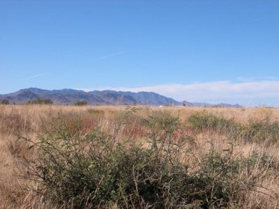 .09 Acre Parcel in Cochise Arizona Near Willcox