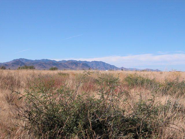 .09 Acre Parcel in Cochise Arizona Near Willcox