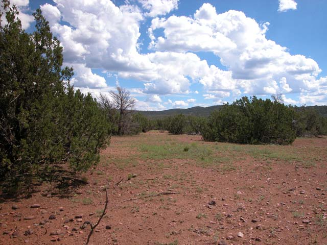 1.13 Acre Parcel in the White Mountains of Arizona