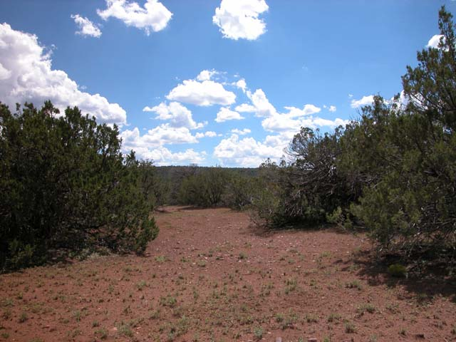 1.63 Acre Parcel in the White Mountains of Arizona