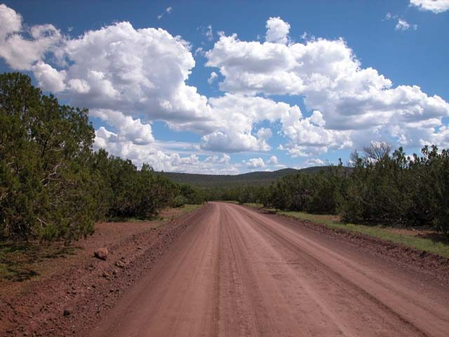 1.29 Acre Parcel in the White Mountains of Arizona