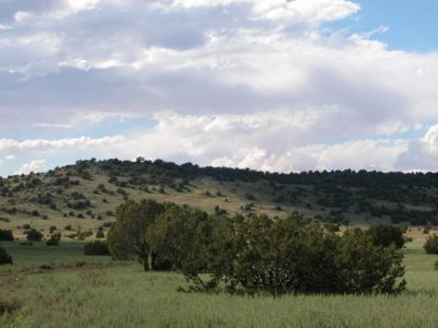 2.3 Ac Arizona Parcel near St Johns Show Low Mtns