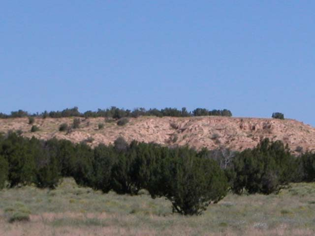 2.32 Ac Wooded Northern Arizona Parcel near Sanders