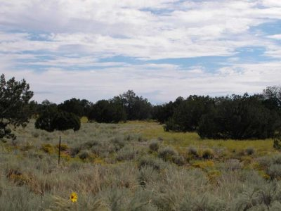 1.73 Acs of Arizona Land on the Colorado Plateau Views