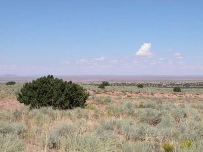 5 Ac Arizona Ranch in Apache County near National Park