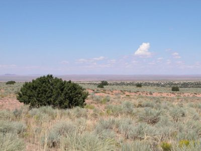 1.05 Acre Arizona Parcel on the Colorado Plateau