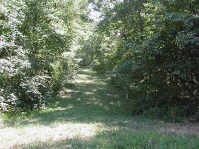 .2 Acre in Beautiful Ozark Acres Arkansas.