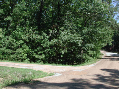 .25 Acre in Beautiful Ozark Acres Arkansas.