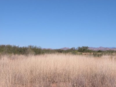 .21 Acre Arizona Parcel near the Chiricahua Mountains