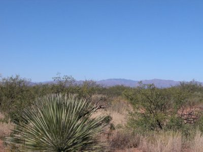 .21 Acre Arizona Parcel near Sonora Mexico