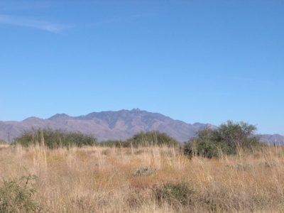 .3 Acre Arizona Parcel near Chiricahua Nat. Monument