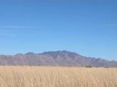 .24 Acre Arizona Parcel near Twin Lakes County Club