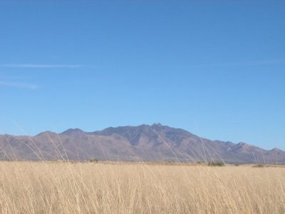 .21 Acre Arizona Parcel near the Coronado Nat. Forest